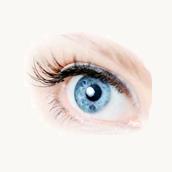 Especialistas en diseño de la mirada
